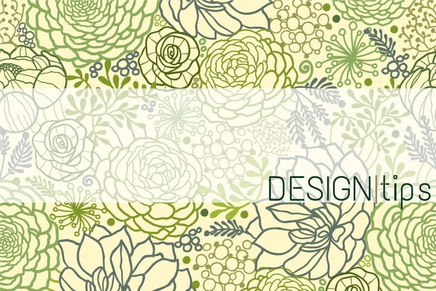 Featured Blog Image | Illustrated Succulents for Design Tips