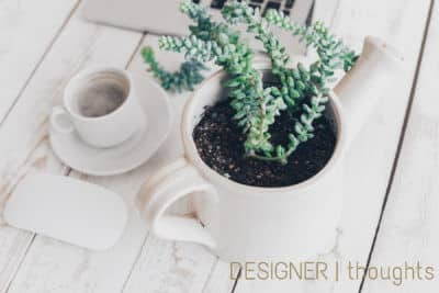 Featured Blog Image | Designer Thoughts | succulent in a pot next to a computer mouse and tea cup