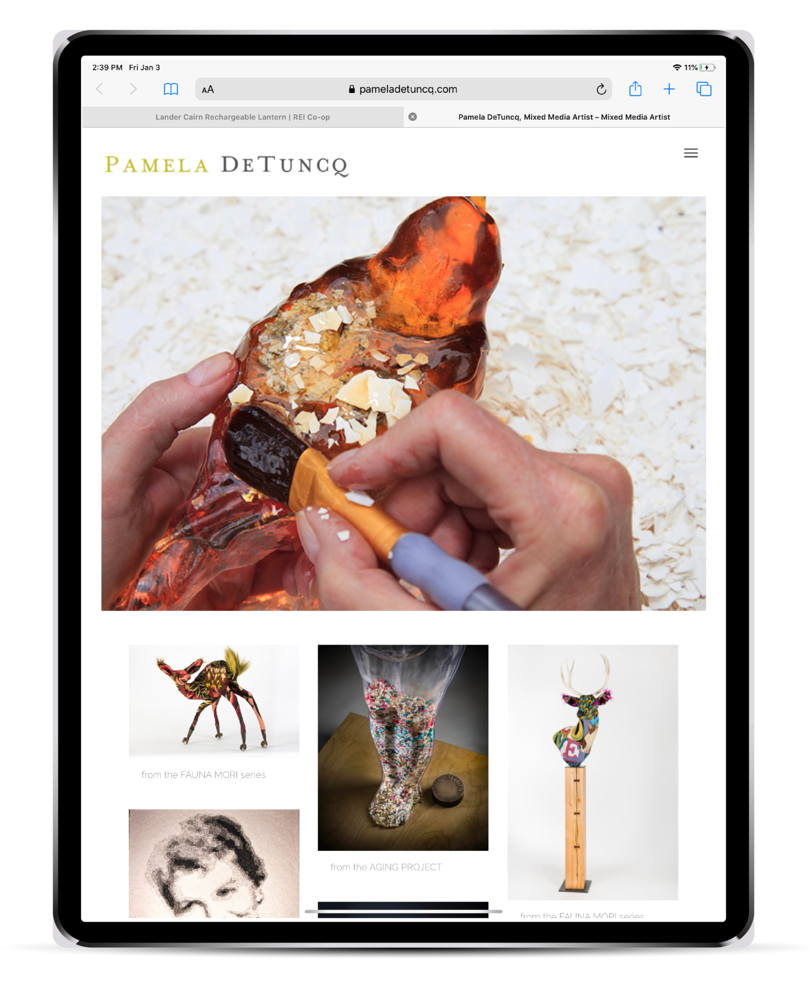 Portfolio | Website Design for Pamela DeTuncq displayed on an iPad