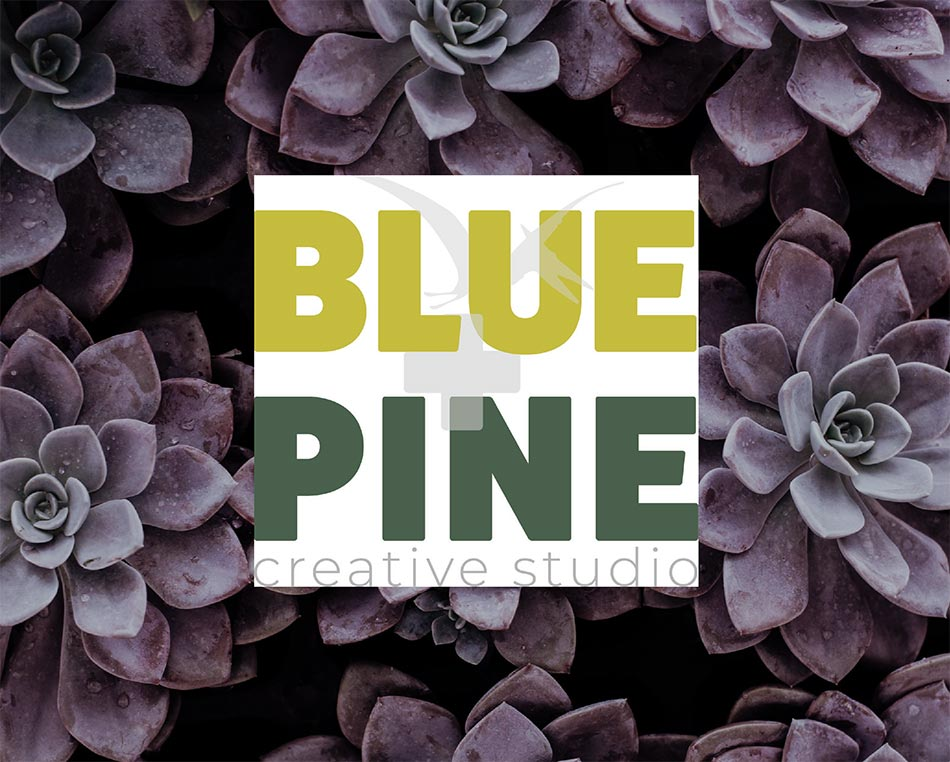 An image of purple succulents with the jpeg version of the Blue+Pine logo on top. It is not transparent so it has a white box surrounding the logo.